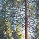 """Tree at Rocky Point""- Vancouver scenery in oil by J PH"