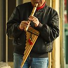 Peruvian Street Musician by lincolngraham