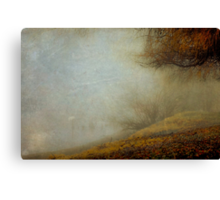 Trees of the Fraser Canvas Print