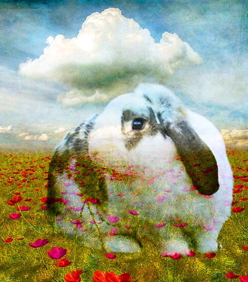 STRAWBUNNY FIELDS FOREVER by Tammera