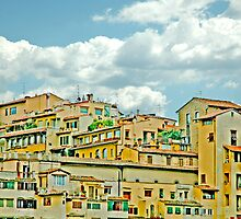 City Center Firenze Italy by Danielle Girouard
