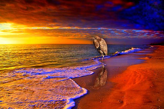 Enjoy the moment by LudaNayvelt