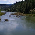 The Umpqua river by Lonnie Ornie