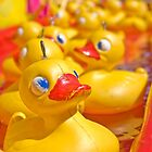 Rubber ducky you're the one  by clearviewstock