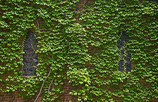 Lost Windows 2 - Gostwyck Chapel - Spring by clearviewstock