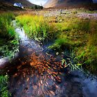 Lagangarbh stream, Glencoe, Argyll by David Mould