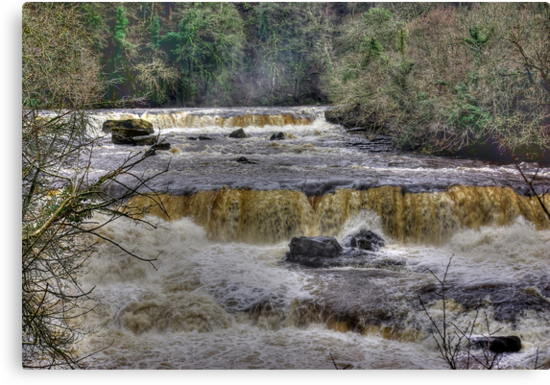 The Falls - River Ure by Trevor Kersley