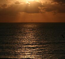 As the Day Ends by kdg2day