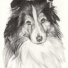 Sheltie by whiterabbitart