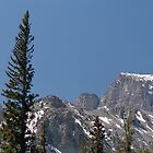 Wheeler Peak, Great Basin National Park by cratermoon