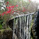 Waterfall with Pink, Busch Gardens, Tampa, FL by Debbie Robbins