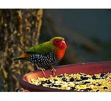 Color Confusion Photographic Print
