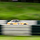 Fenced by Speedster502