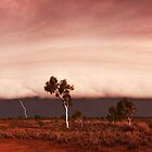 Pilbara Storm Cell by Sheldon Pettit