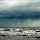 Rain clouds over the sea by Roz McQuillan