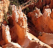 Hoodoos at Inspiration Point by Alex Cassels