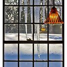 """the WINDOW"" by grsphoto"