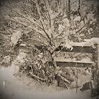 Snowy Fence by ericseyes