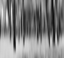 Trees - Still and Moving #2 by RyanLeePhoto