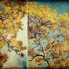 Vintage Spring by Eliza1Anna