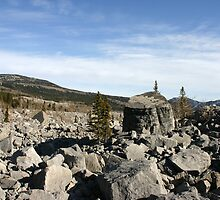 Rubble at Frank's Slide by Alyce Taylor