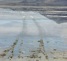 Skimming the Bonneville Speedway by TingyWende
