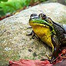 My Good Side by sillyfrog