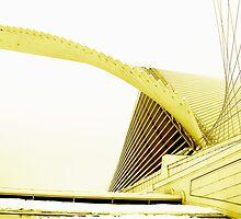 Calatrava's Wings by Bobbie J. Bonebrake
