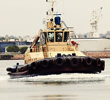 Tug Boat in Newcastle Port by sallydexter