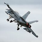 Super Hornet by Bairdzpics