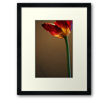 Welcome Spring! Framed Print