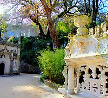 Sintra, welcome to paradise 243..sintra portugal.. by Almeida Coval
