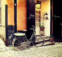 Bicycle in Stockholm by MSaremiPhotos