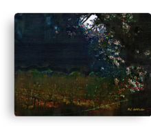Blue Night in the Field Canvas Print