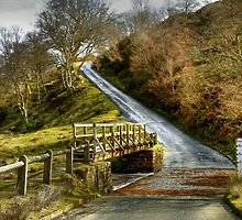 Footbridge Beside the Road to Westerdale by Christine Smith