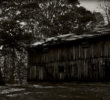 Country Barn - Berkeley Springs by MSParker