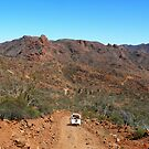 On the Ridgetop Trail in Flinders Ranges by Graeme  Hyde