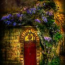 Doorway by ajgosling