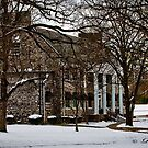 School Building  In The Winter by Ray Wells