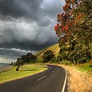 Coromandel Road by Michael Treloar