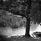 Mystic Lake  by Karen E Camilleri
