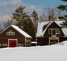 Winter Barns in New England 2011 by Monica M. Scanlan