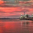 Summer Nights, Geelong Waterfront by Danka Dear
