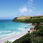 Cape Bridgewater by Alicia  Liliana