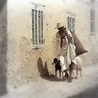 Old Algiers by Laurel  Coleman