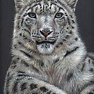Arts & Cats 2015 - Cat Portraits by Nicole Zeug by Nicole Zeug