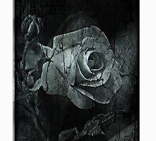 DarkRose by RosiLorz