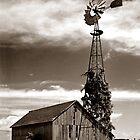 Windmill in Minnesota by George Butch