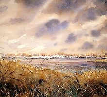 Hamble marshes,  by LorusMaver