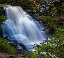 Erie Falls at Ricketts Glen by Murph2010